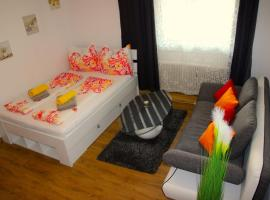 Cozy Linz Apartment, 林茨