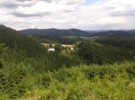 Chalupa na Valassku, Vlčková