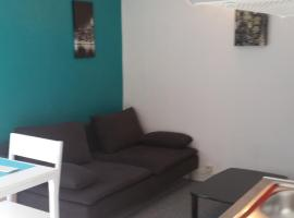 bel appartement à Tours, Tours
