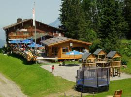 Berghotel Alpina am Pizol, Wangs