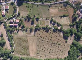 Azienda Agricola Il Querceto, Marsico Vetere