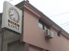Vila Konj, Zaječar