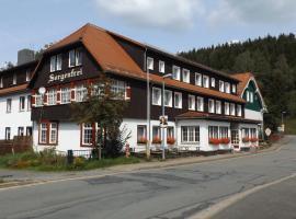 Erlebnis Ferienheim Sorgenfrei, Sorge