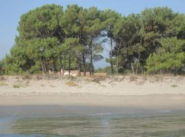 I Pini, Borgo