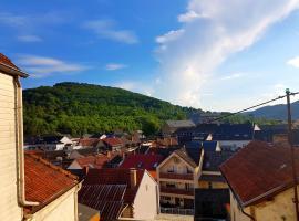 Ein Trip in die Natur, Bollendorf