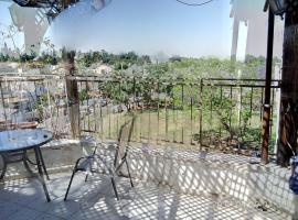 vip charming huge App penthouse like private villa, 'En Gannim