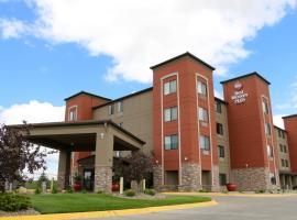 Best Western Plus Omaha Airport Inn 2 Star Hotel