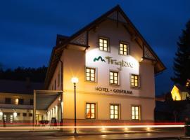 Hotel and guest house Triglav Dobrna, Dobrna