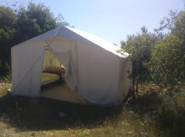 ‎Rasuon Tourist Camp, Ajloun