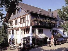 Pension Zur schönen Aussicht, Hallenberg