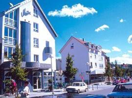 Hotel Restaurant Maître, Wernau