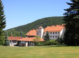 Waldhotel Berghof, Luisenthal