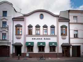Penzion Zelená Žába, Pardubice