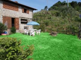 Casa La Vigna, Fibbialla