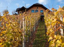 Vineyard Cottage Bregac, Šmarješke Toplice