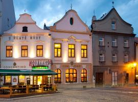 Hotel Concertino Zlatá Husa, Jindrichuv Hradec