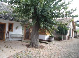 Country House Pod dudom Aljmaš, Aljmaš