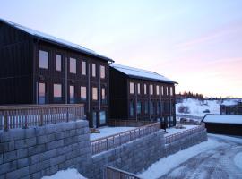 Funäs Ski Lodge – House A & C, Funäsdalen