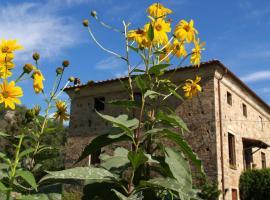 Al Palazzaccio, Calci