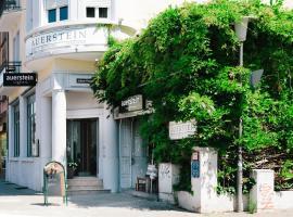 Hotel & Restaurant Auerstein, Hajdelberg