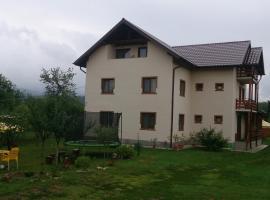 Casa de Vacanta Macovei, Polovragi