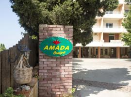 Hotel Amada