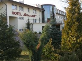Hotel Ambasador Chojny, Lodsch