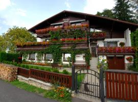 Pension Vinkl, Harrachov