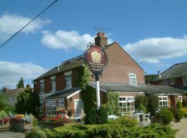 The Three Lions, Fordingbridge