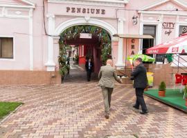 Pensiunea City, Reghin