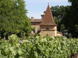 Chambres d'Hôtes Château Touny les Roses, Lagrave