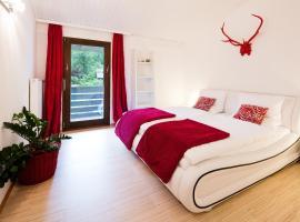 W & S Executive Apartments - Hallstatt I, Hallstatt