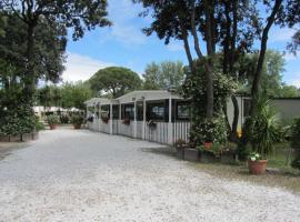 Camping Pineta, Calambrone
