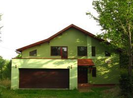 Casa Roatis, Şişeşti