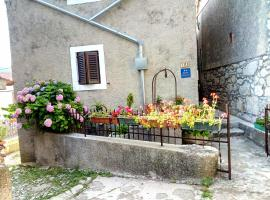 Apartment Merikanić, Beli