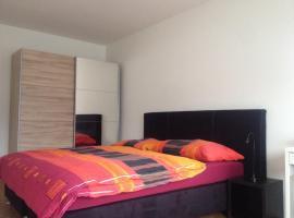 rent a home Tannwaldstrasse, Olten