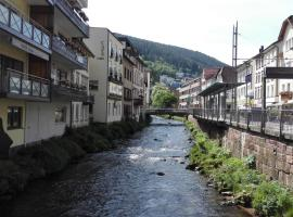 Wildbadferien, Bad Wildbad