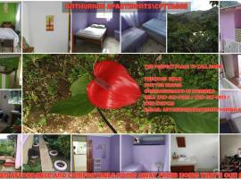 Anthurium Apartment, Roseau