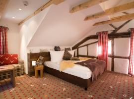 Alpin Lifestyle Hotel Löwen & Strauss, Όμπερσντορφ