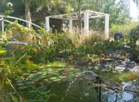 Kmo Yam In The Love Garden, Kinneret