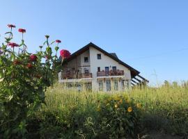 Pensiunea Doina Bucovinei, Mănăstirea Humorului