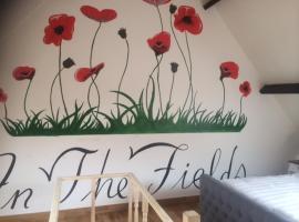 In The Fields, Zonnebeke