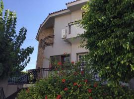 Nikola's House