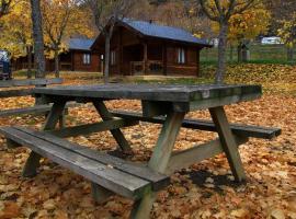 Camping Viu, Víu