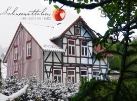 Harzhaus Schneewittchen, Sorge