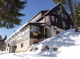 Hotel Flora, Vítkovice