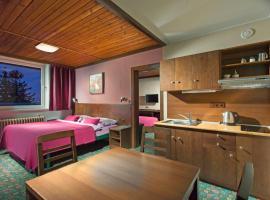 Hotel Tetřeví Boudy