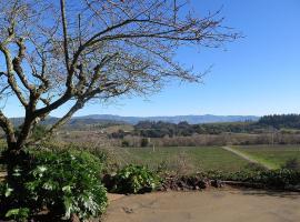 Vineyard Views at the KC House, Healdsburg