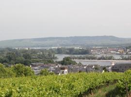Ferienwohnung Luna, Rüdesheim am Rhein