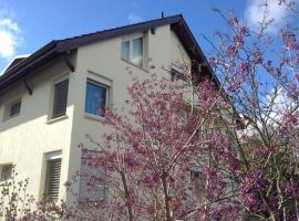Lovely Basel Apartment, Allschwil